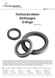 Technische Daten Dichtungen O-Ringe - Steyr-Werner