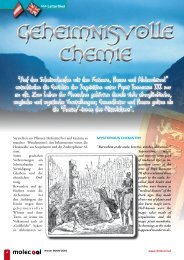 Leitartikel - Ritter, Hexen Alchemie Winter 09/10