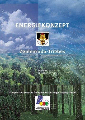 Energiekonzept Zeulenroda-Triebes EV