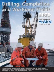 Drilling, Completion and Workover Fluids 2008 - My Pages