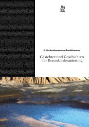 StuBA-Broschüre 20 Jahre Braunkohlesanierung - LMBV