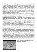 Funktionskontrolle von bepflanzten und unbepflanzten Bodenfiltern ... - Seite 6