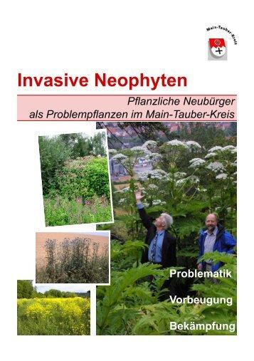 Invasive Neophyten - Remlingen