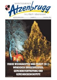 Zeitung als PDF herunterladen - NetTeam Internet