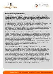 Druckansicht - Holzapfel Group