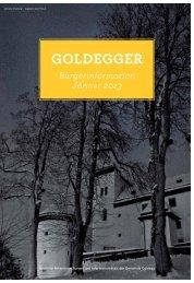 Bürgerinfo Jänner 2013 - Gemeinde Goldegg