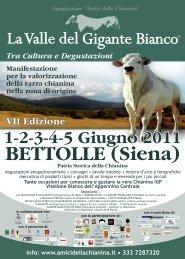 1-2-3-4-5 Giugno 2011 - Comune di Foiano della Chiana