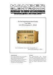 Schwingungsauswertung - Prager Elektronik