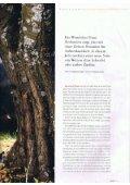 Ganzseitiger Faxausdruck - Wein- & Sektmanufaktur Strohmeier - Seite 2