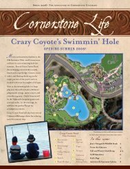 April 2008 Newsletter - Cornerstone Colorado