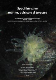 Specii invazive marine, dulcicole și terestre