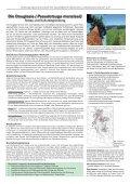 Die Douglasie (Pseudotsuga menziesii) Anbau und ... - EZG - Seite 2