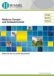 Als PDF Download - Hummel Systemhaus
