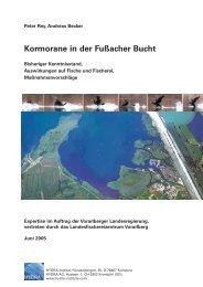 Kormorane in der Fußacher Bucht - HYDRA-Institute