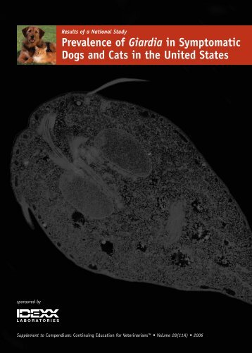 Prevalence of Giardia in Symptomatic Dogs and Cats - IDEXX ...