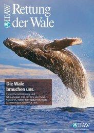 Rettung der Wale