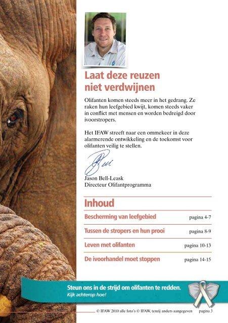 Bescherming van olifanten - International  Fund for Animal Welfare