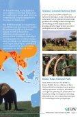 Bescherming van olifanten - International  Fund for Animal Welfare - Page 5