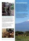 Elefanten und Elfenbein - Seite 6