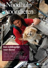 Noodhulp voor dieren -  International Fund for Animal Welfare