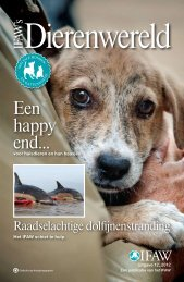 Een happy end... - International Fund for Animal Welfare
