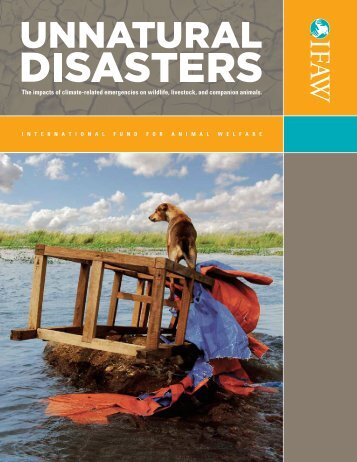 Unnatural Disasters: The Impacts of Climate-related Emergencies