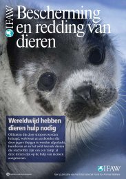 Bescherming en redding van dieren - International Fund for Animal ...