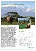 Bescherming en redding van dieren - International Fund for Animal ... - Page 7