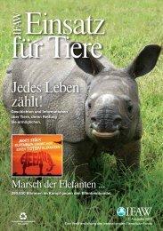 Bernie - International Fund for Animal Welfare