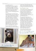 Bernie - International Fund for Animal Welfare - Seite 4