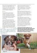 Bernie - International Fund for Animal Welfare - Seite 5