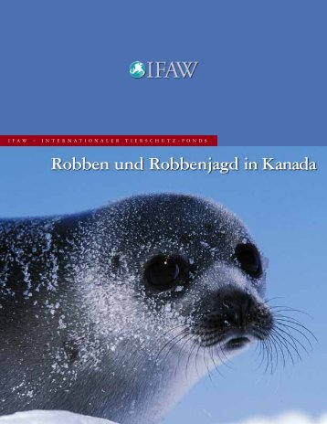 Robben und Robbenjagd in Kanada - International Fund for Animal ...