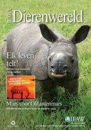 Elk leven telt! - International Fund for Animal Welfare