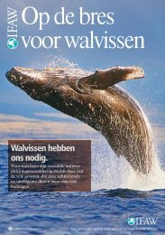 Op de bres voor walvissen - International Fund for Animal Welfare