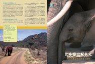 和小象一起长大 - International Fund for Animal Welfare