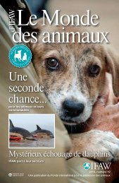 Le Monde des animaux - International Fund for Animal Welfare