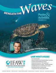 theW - International Fund for Animal Welfare