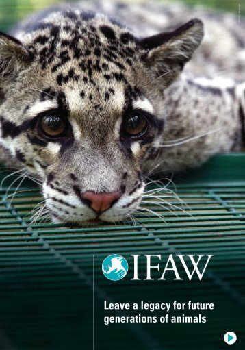Leave a legacy for future generations of animals - International Fund ...