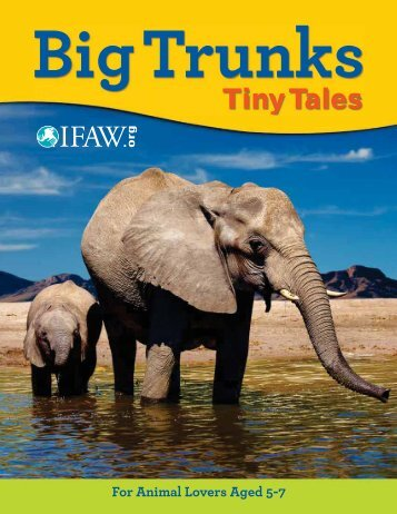 Big Trunks, Tiny Tales Lesson plans & Student