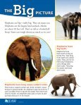 Big Trunks, Tiny Tales Lesson plans & Student - Page 4