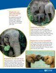 Big Trunks, Tiny Tales Lesson plans & Student - Page 5