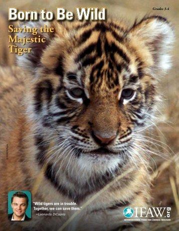 Born to Be Wild - International Fund for Animal Welfare