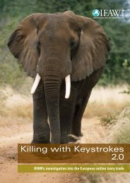 Killing with Keystrokes 2.0 - International Fund for Animal Welfare