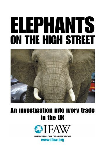 Elephants on the high street an investigation into - International ...