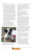 Happyends - International Fund for Animal Welfare - Page 4