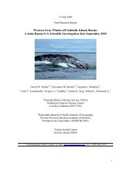 Western Gray Whales off Sakhalin Island, Russia - Southwest ...