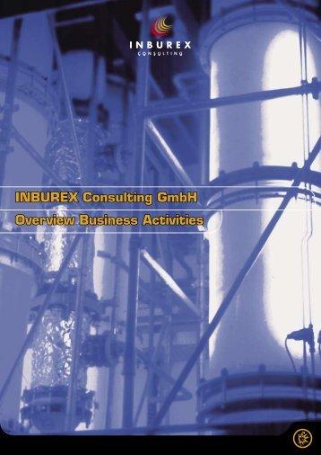 INBUREX Consulting GmbH Overview Business Activities
