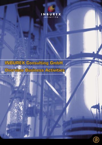 INBUREX Consulting GmbH Overview Business Activities