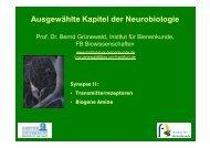 Ausgewählte Kapitel der Neurobiologie - Institut für Bienenkunde