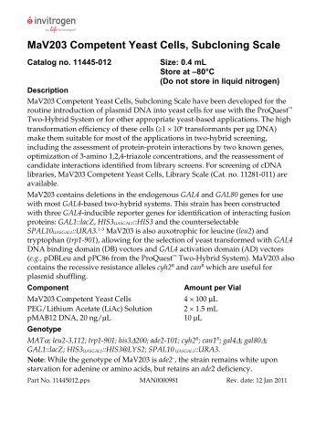 Team:Cornell/team/bios - 2012.igem.org